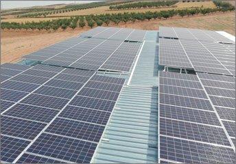 AMB innova en el sector agrícola mediante el Riego Solar Fotovoltaico