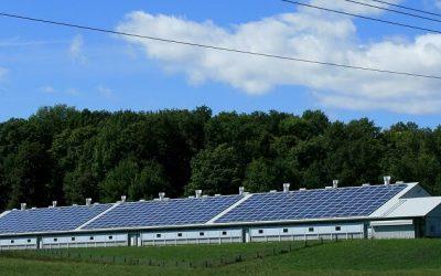 Requisitos y pasos para instalar placas solares de autoconsumo