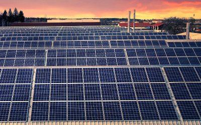 4 Ejemplos de Autoconsumo Solar en la Industria Agroalimentaria